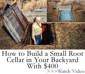 build an easy cellar